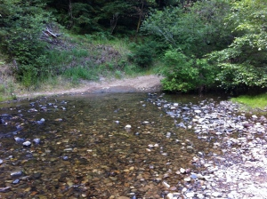 Fire road stream crossing