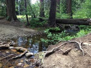 Tiltill Creek